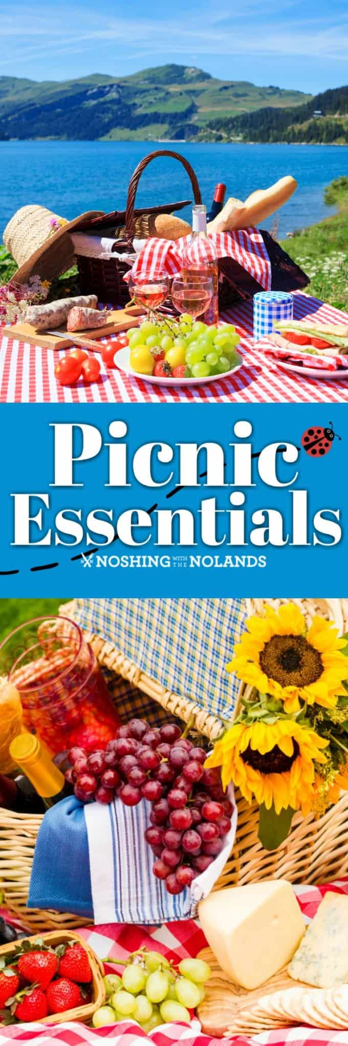 Picnic Essentials is a full guide to making the best picnic ever! Get outside and enjoy your summer!! #picnicessentials #picnic #picnicbasket