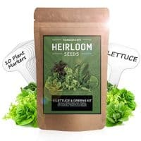 10 Heirloom Lettuce and Leafy Greens Seeds - 1500 Seeds - Non Gmo Seeds For Planting - Kale, Spinach, Butter, Oak, Romaine, Iceberg, Bibb, Arugula | Hydroponic Home Vegetable Garden | Microgreen Seeds