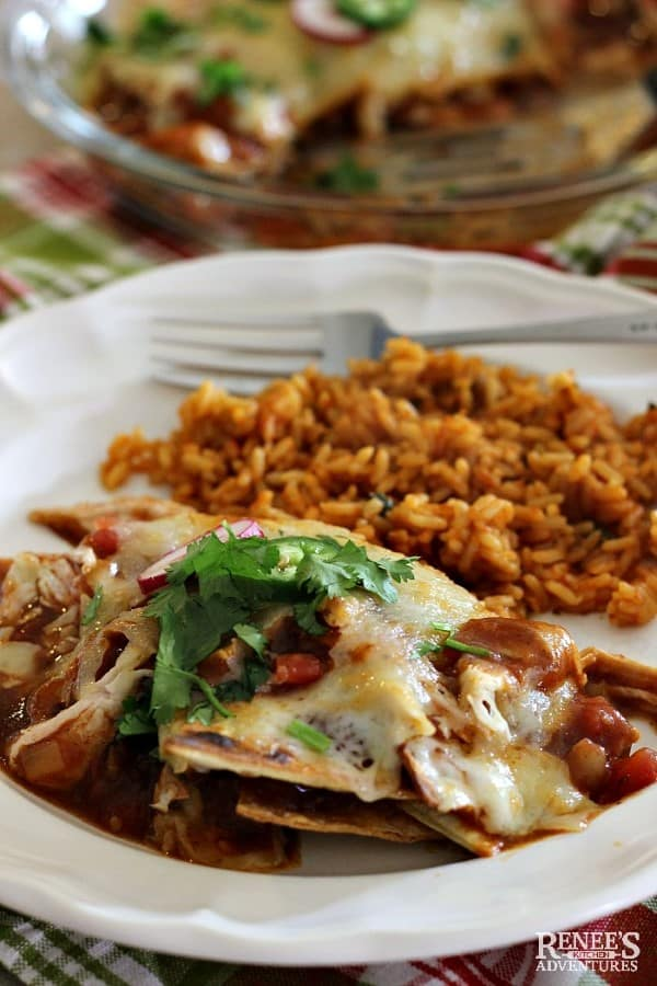 EASY CHILAQUILES  on a white plate with rice