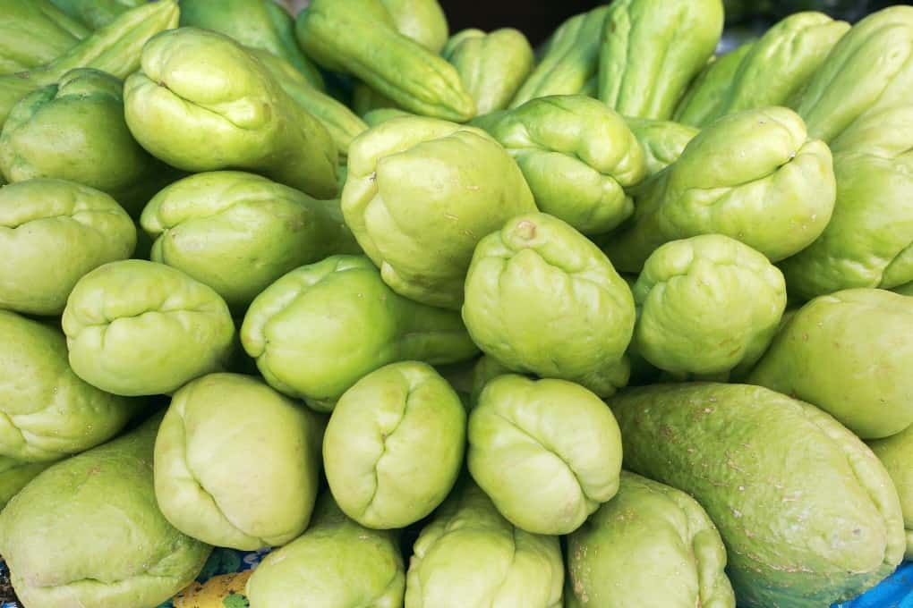 Lots of Chayote squash stacked together.
