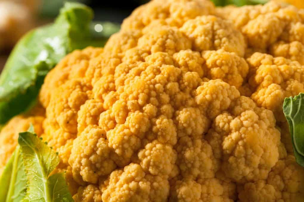 Close up of orange cauliflower