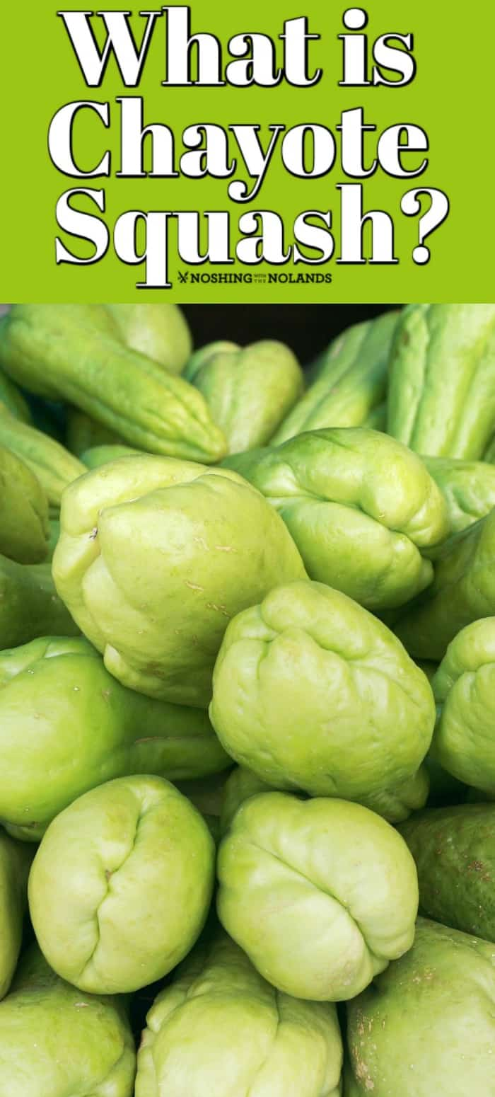 What is Chayote Squash Pin, close up of chayote squash.