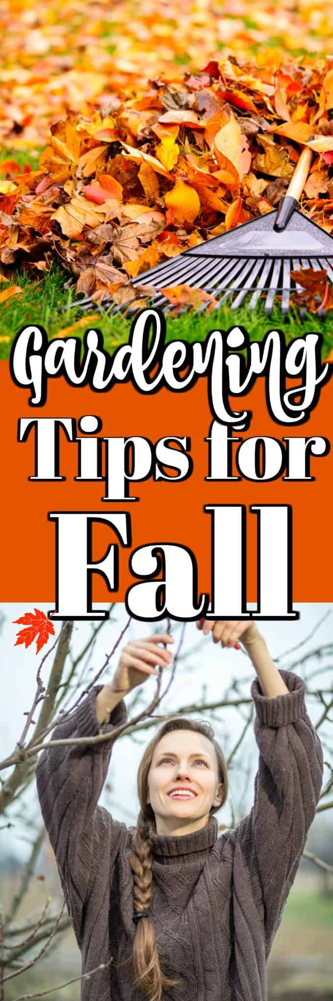 Fall Gardening Tips to Get You Ready for Winter will save you time and effort come spring and have you reaping the rewards sooner!! #fallgardening #tipsforfall #howto