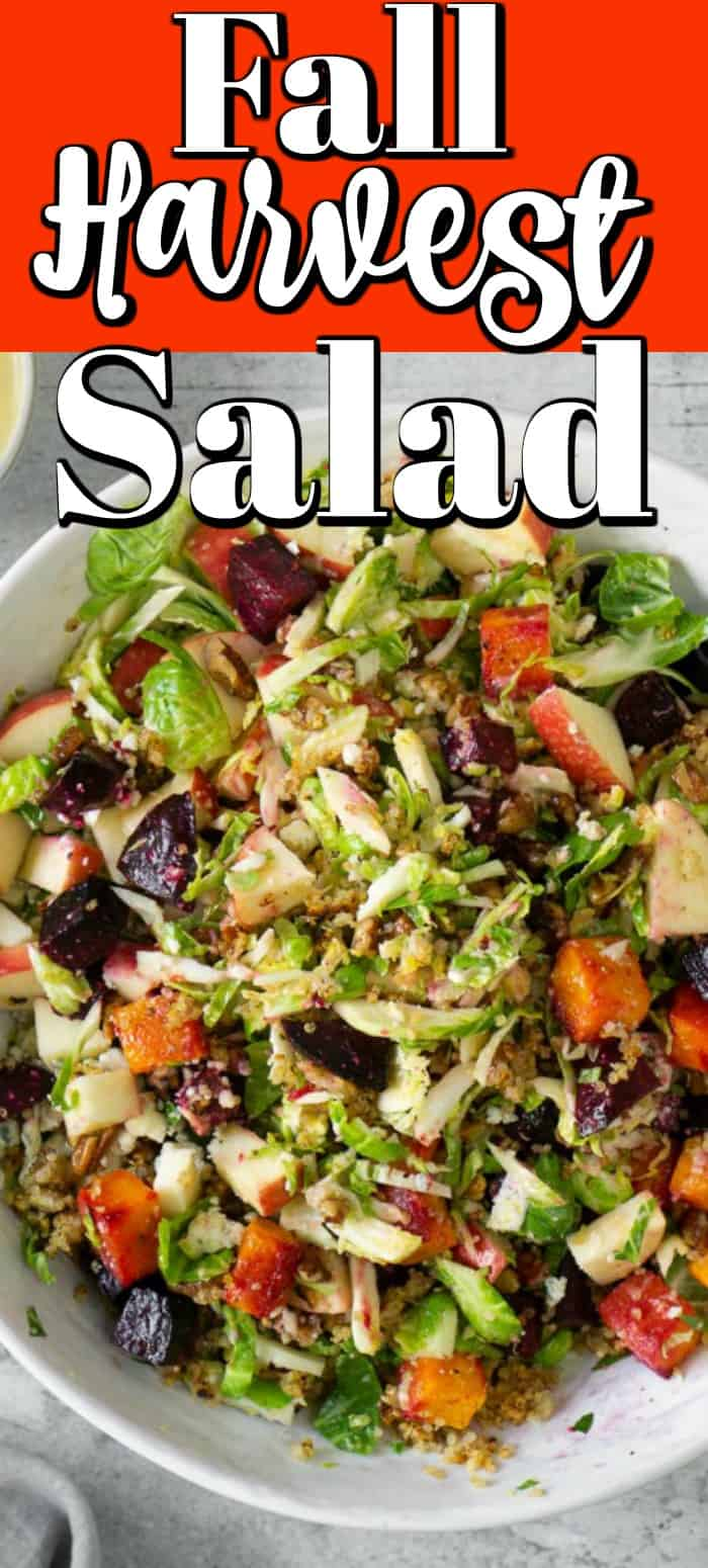 A fall harvest salad that celebrates all things fall. Loaded with brussels sprouts, blue cheese, crispy quinoa, roasted beets, and butternut squash and topped with the most delicious champagne apple cider vinaigrette! #fallsalad #harvest #applevinaigrette