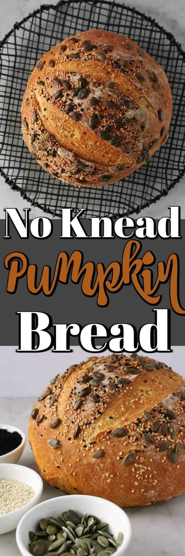 Let us walk you through the steps on how to make this artisan looking Pumpkin No Knead Bread!! #bread #pumpkin #homemade