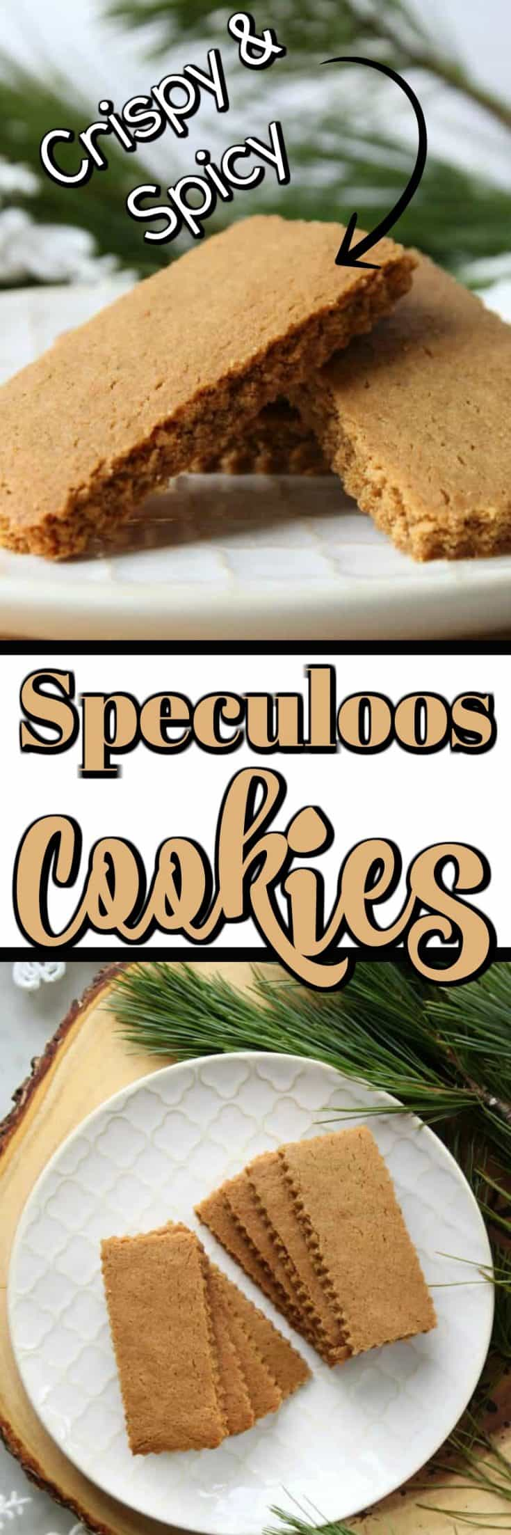 These Speculoos Cookies (Speculaas) are a favorite at any time of the year!! They just seem more magical at Christmas time and St. Nicolas will love to have a plateful on his busy night!! #speculoos #speculaas