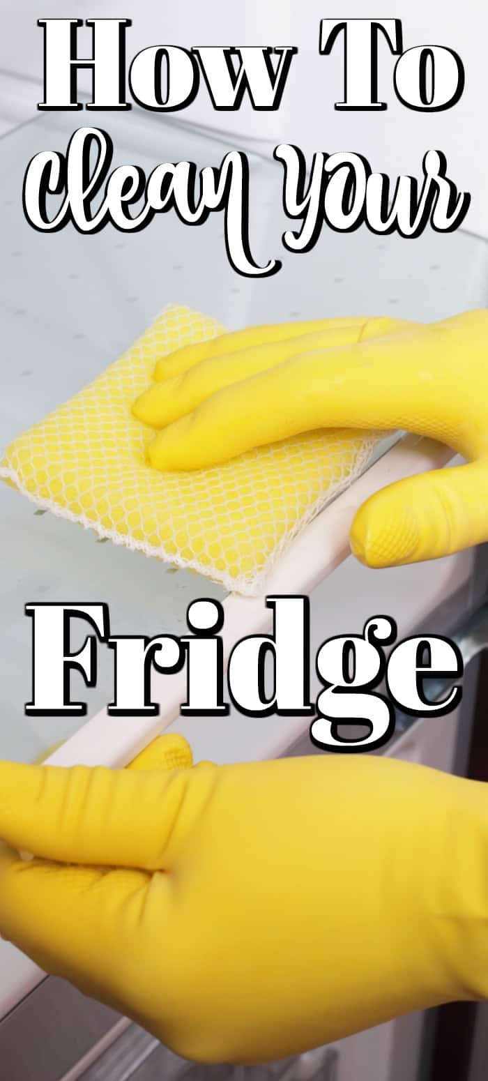 How to Clean Your Fridge will help you will this chore and have this very used appliance sparkling clean and fresh again. #fridge #kitchen #cleaning