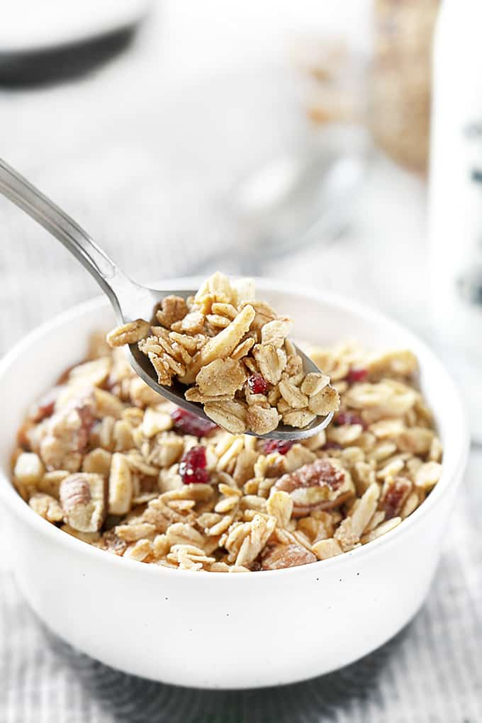 Spoonful of Homemade Granola