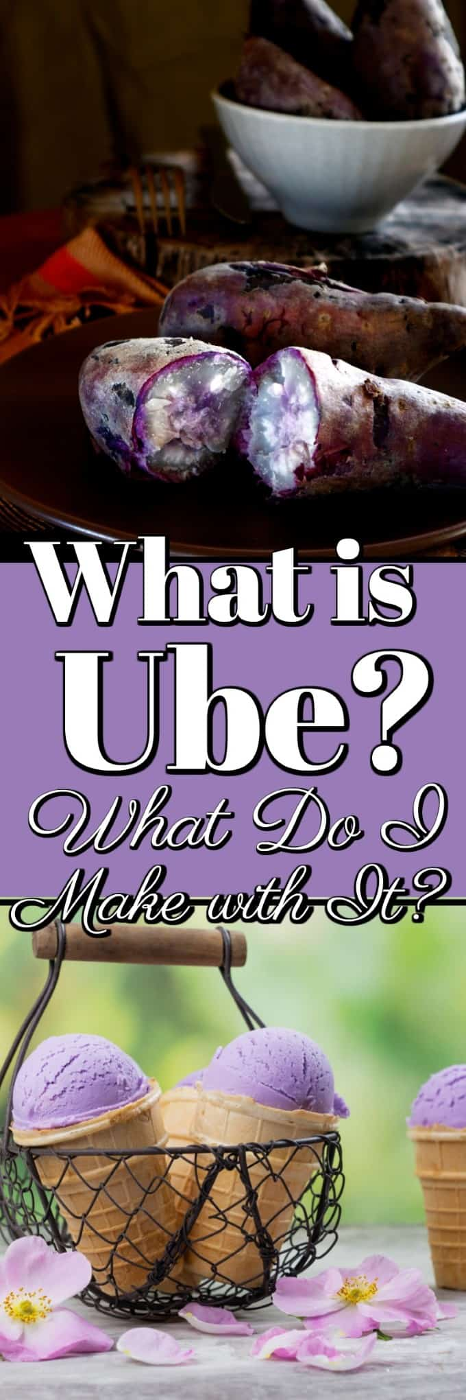 What is Ube? What Do I Make With It? This purple sweet potato is all the rage for lovely colored lilac desserts. Come and learn all about it! #howto #Ube