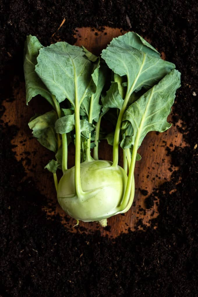 kohlrabi on a board with dirt surrounding it.