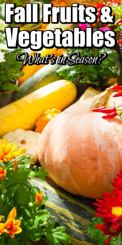 Fall Fruits and Vegetables - What's in Season? Pin