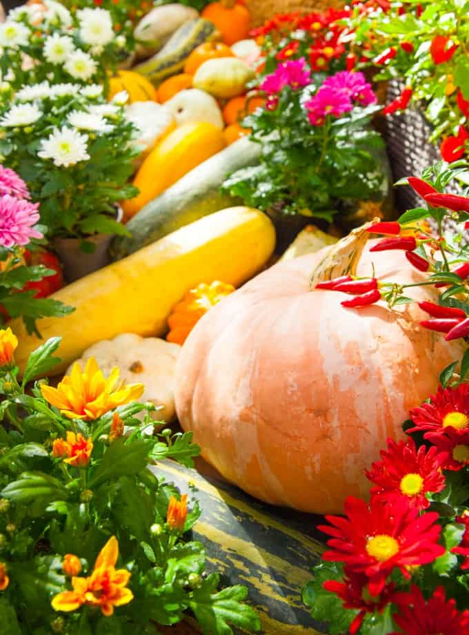 Fall vegetables and flowers on display.