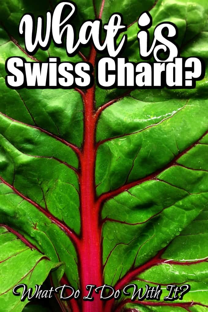 What is Swiss Chard? What Do I Do With It? Pin