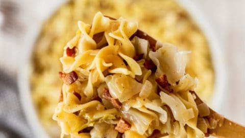 Haluski - Fried Cabbage and Noodles