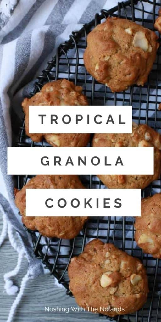 Tropical Coconut Chewy Granola Cookies Pin