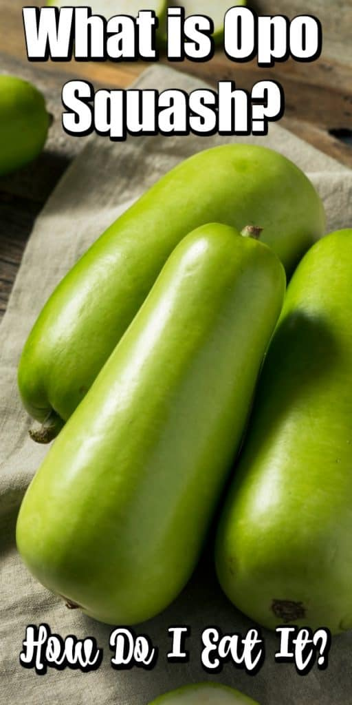 What is Opo Squash? How Do I Eat It? Pin