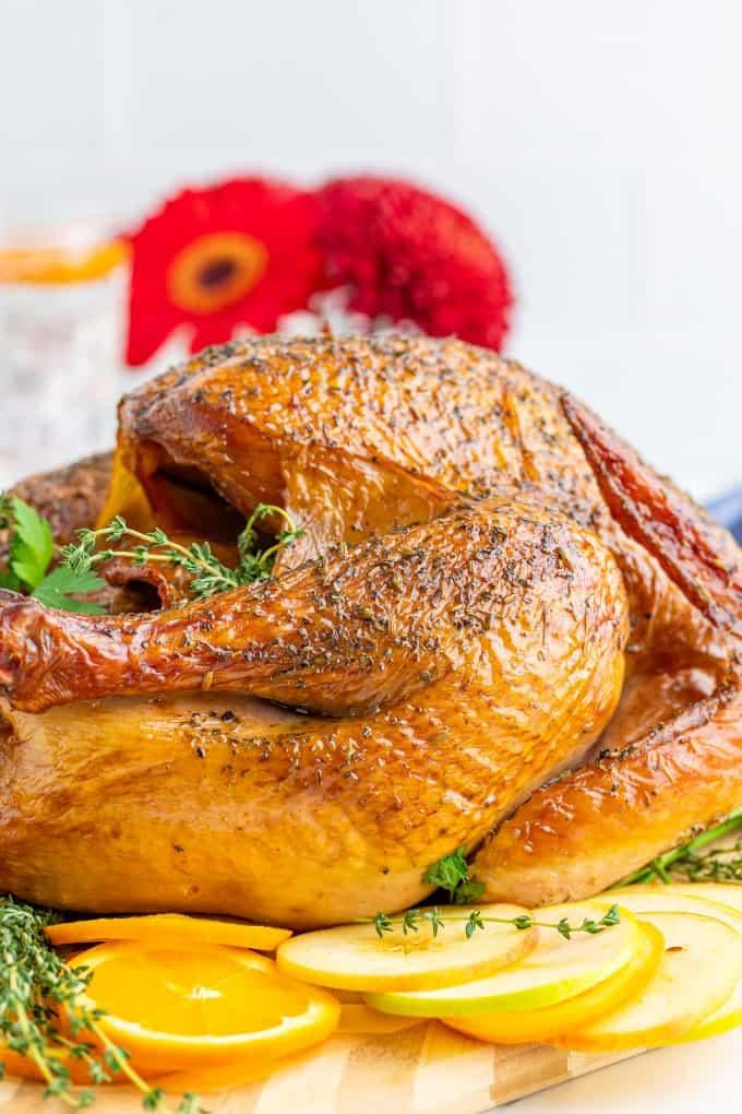 Side shot of a turkey