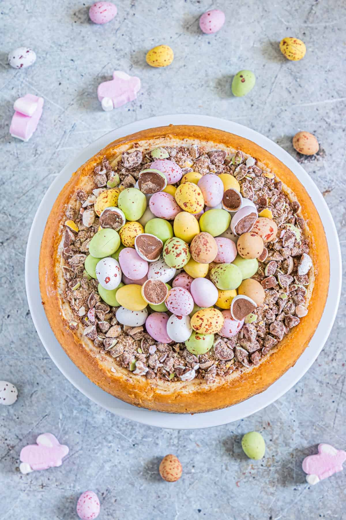 Complete overhead shot of Easter Egg Instant Pot Cheesecake
