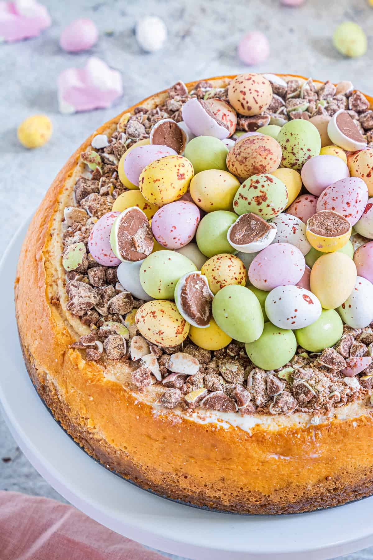 Overhead view of an Easter Egg Instant Pot Cheesecake