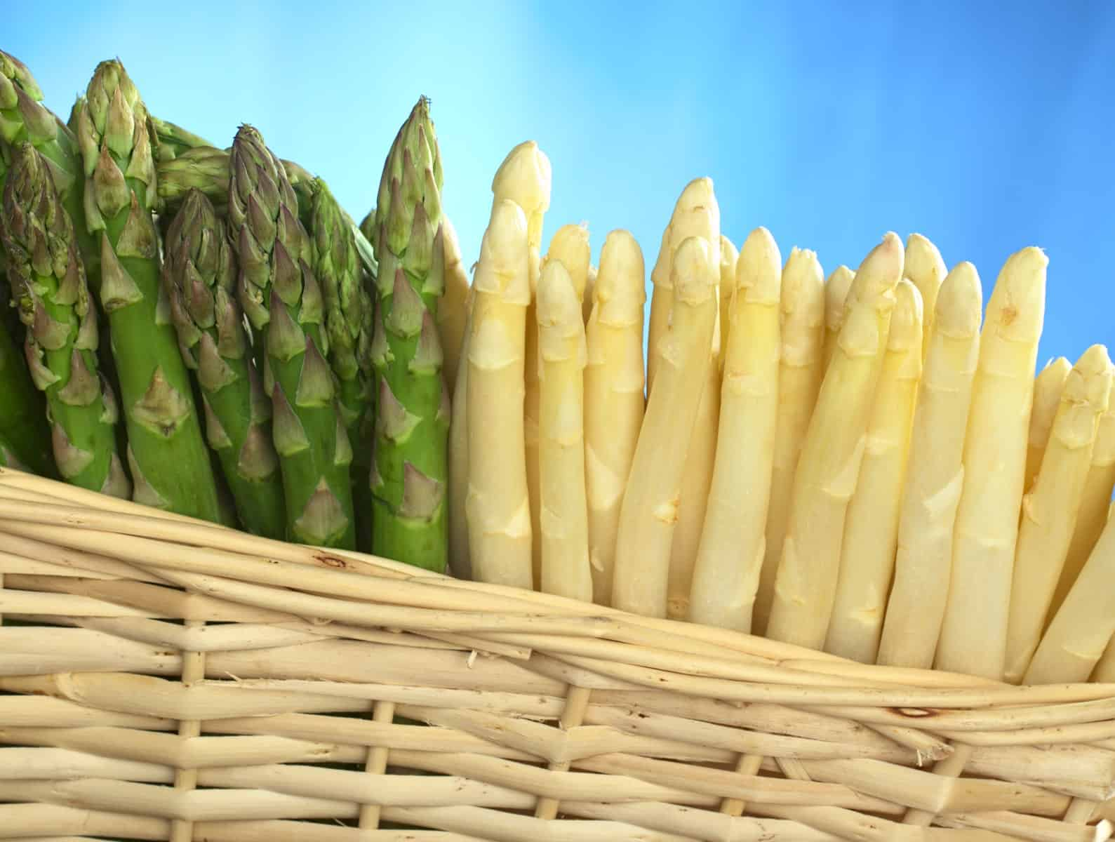Asparagus in basket, green and white.