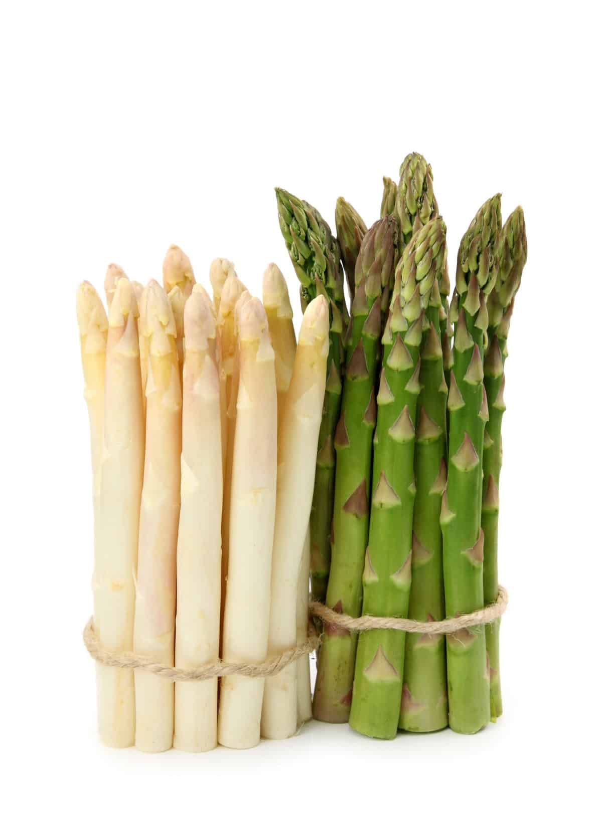 Two bunches of asparagus, one white and one green