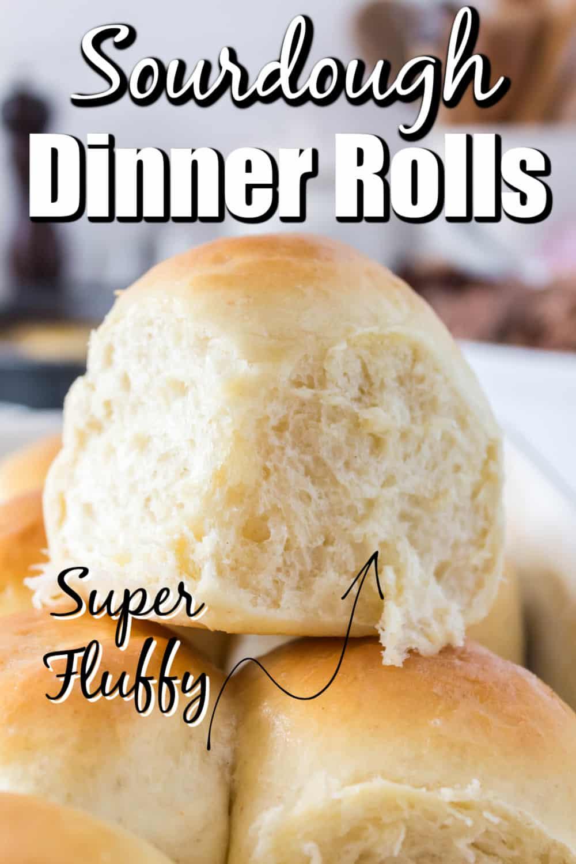 Sourdough Dinner Rolls Recipe Pin
