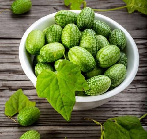 Bowl of cucamelons in plate on rustic table vertical