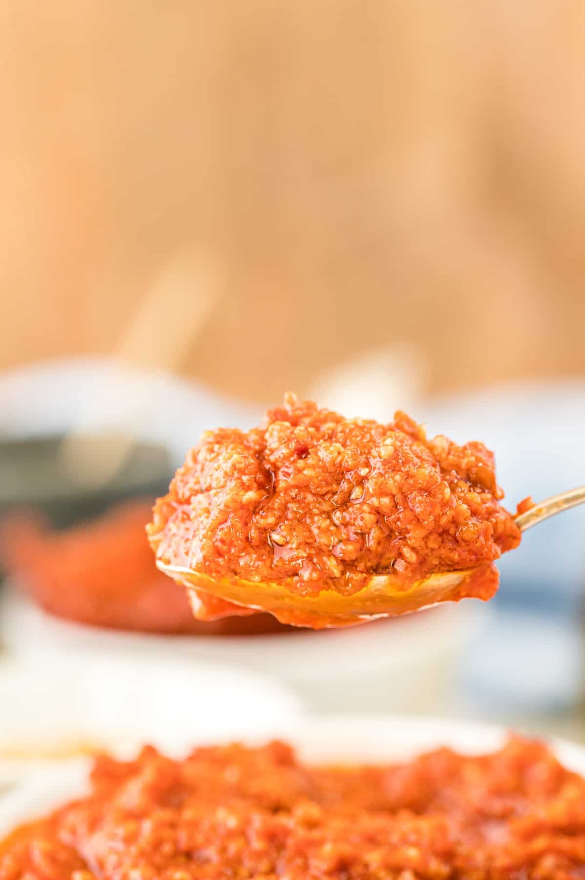 Spoonful of Pesto Rosso