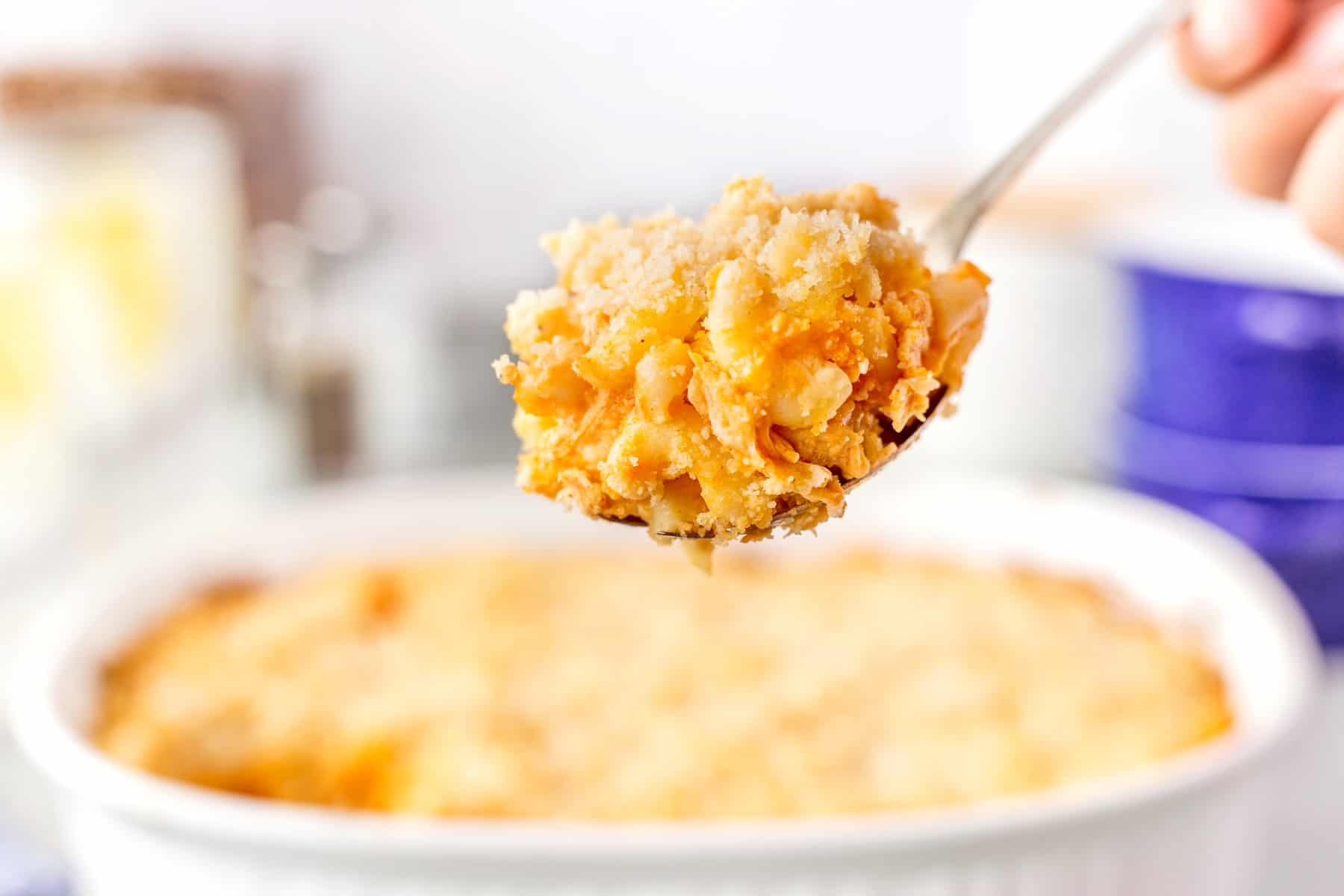 Horizontal shot of Buffalo Chicken Mac and Cheese on a spoon