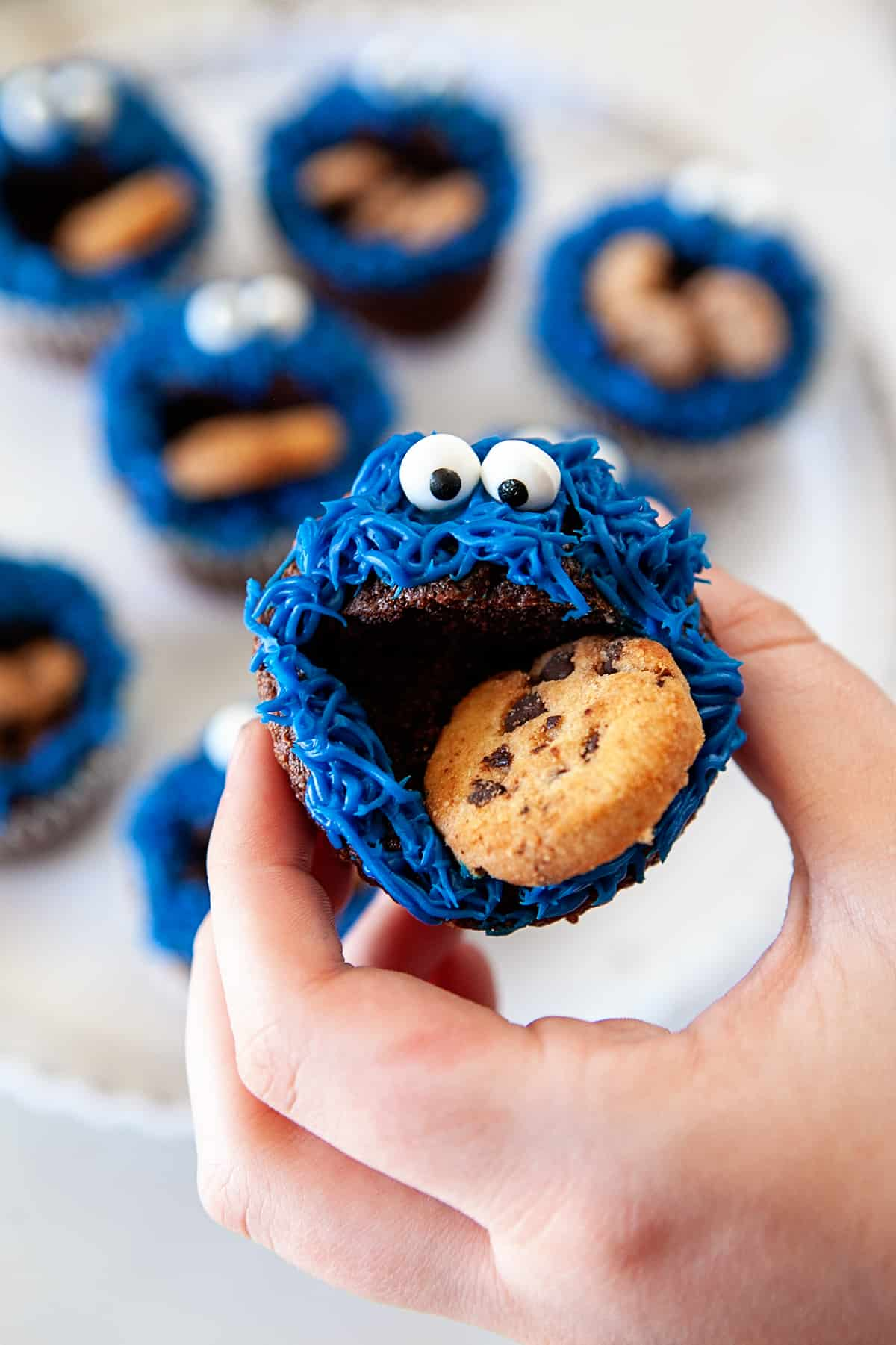 Holding a Fun Cookie Monster Cupcake