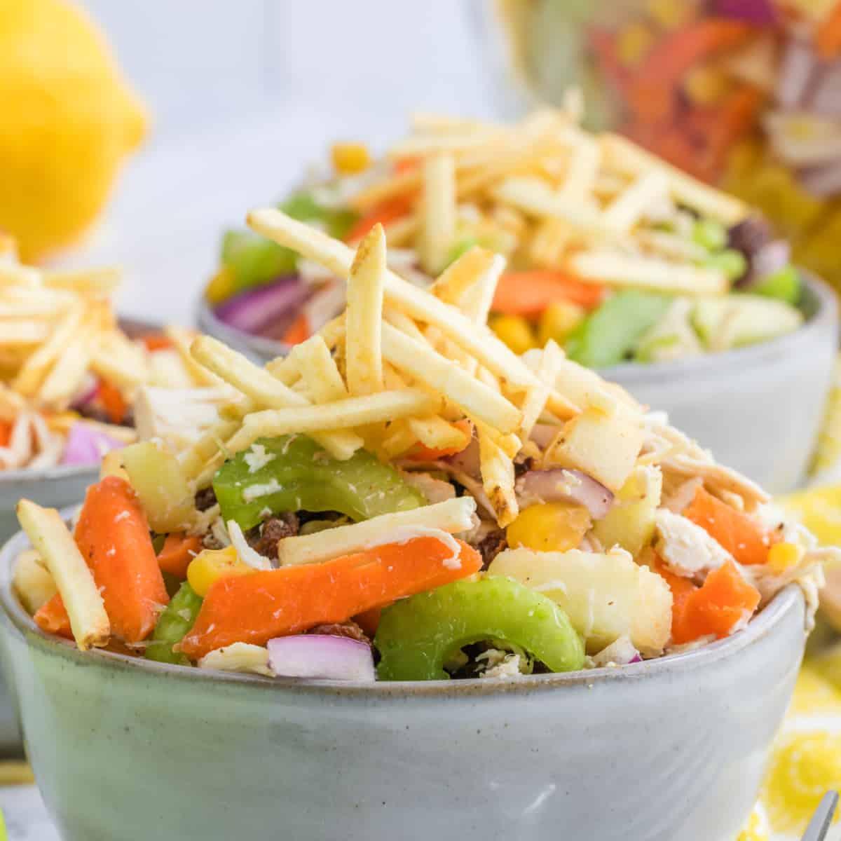 Horizontal close up of Brazilian Chicken Salad