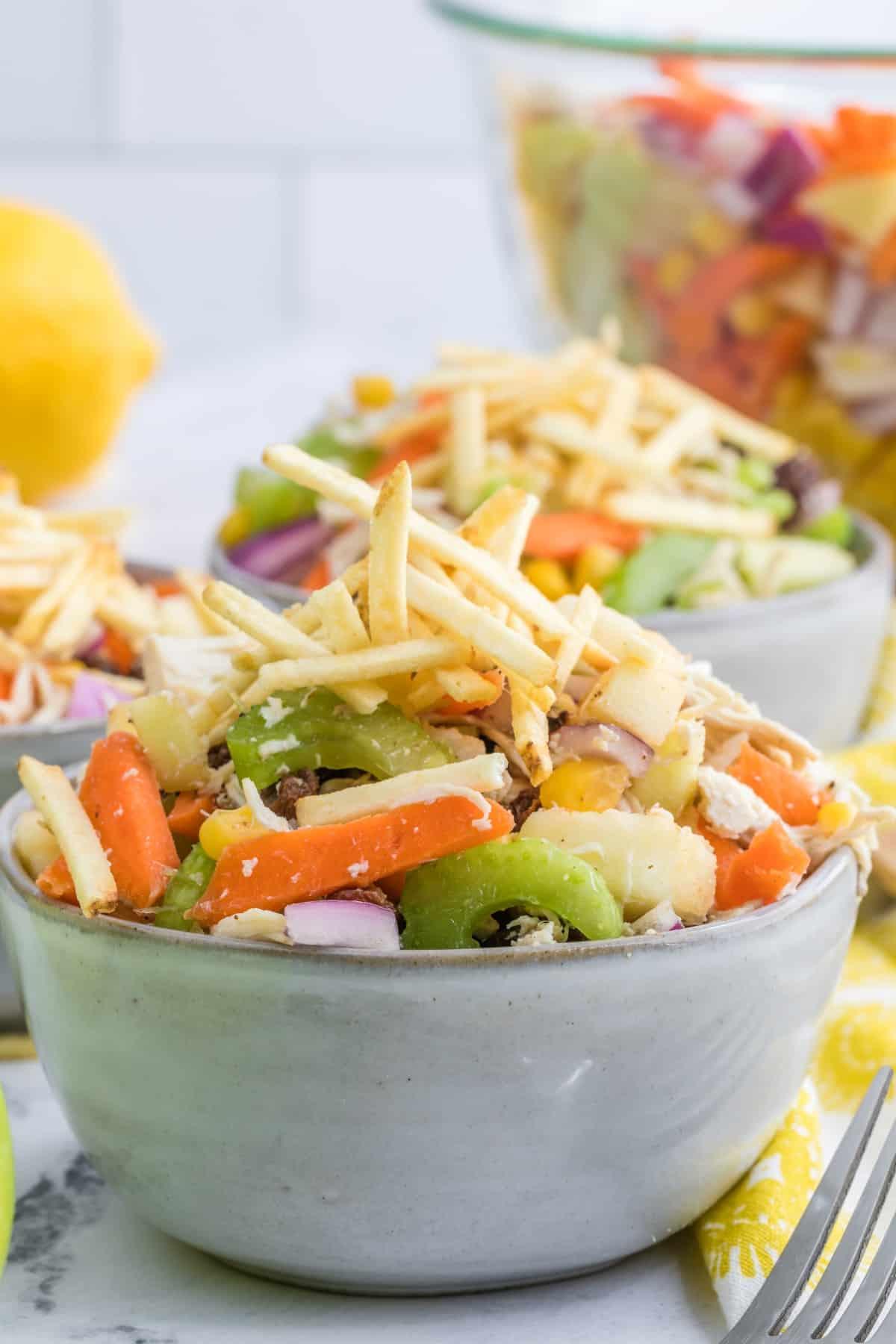 Closeup of Brazilian Chicken Salad in bowls