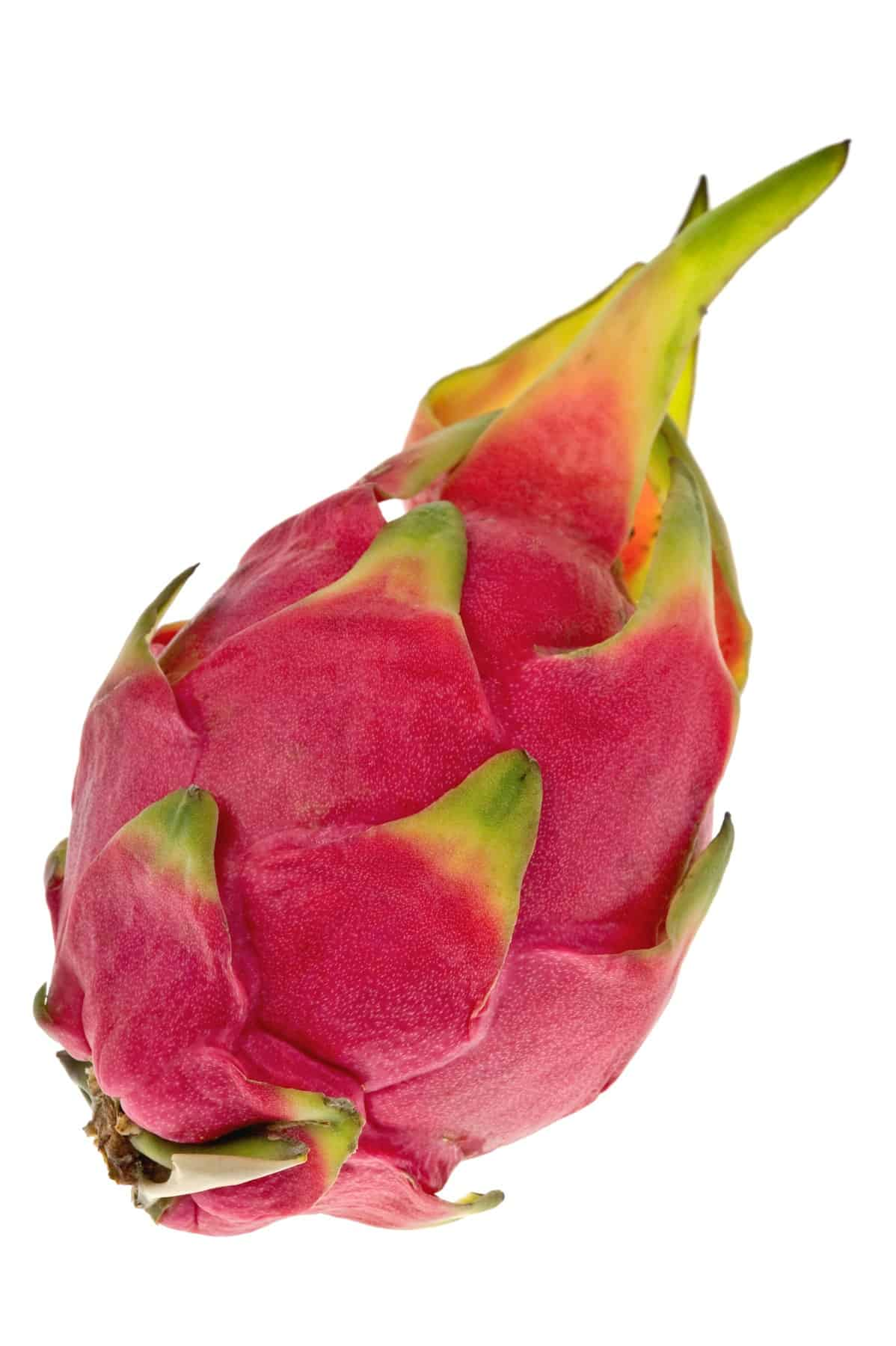 A whole dragon fruit on a white background