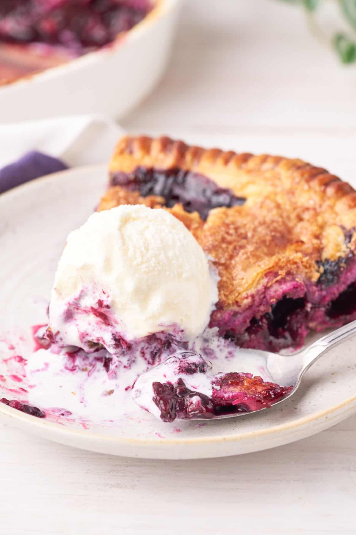 Blueberry pie and ice cream